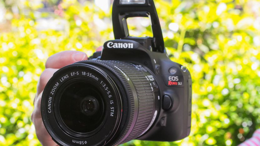 Лучшие фотоаппараты - Canon EOS Rebel SL1