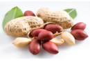 ТОП-10 самых аллергенных продуктов питания