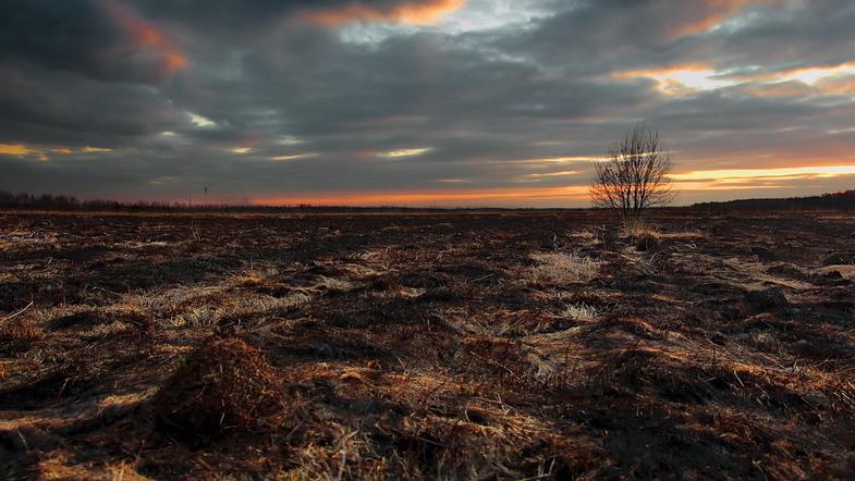 Экологическая катастрофа на Донбассе