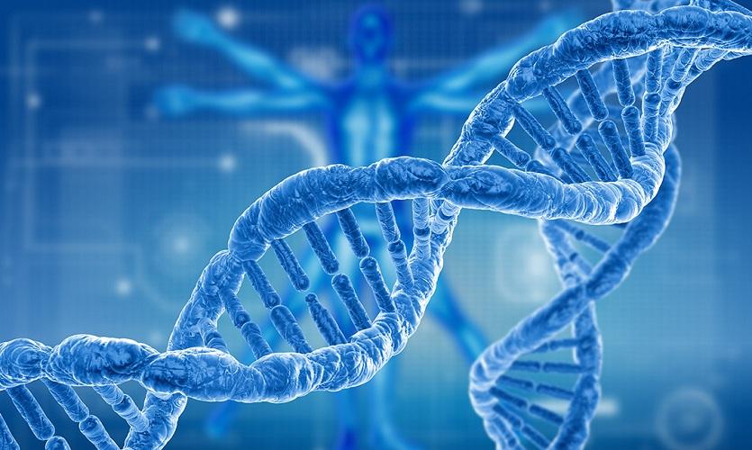 Топ-4 открытия в науке, запланированные на 2020 год
