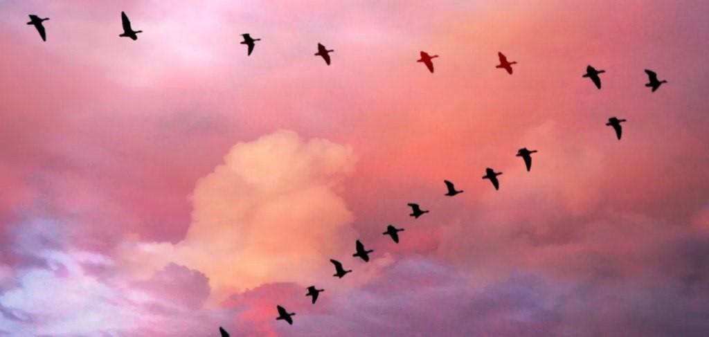 5 явлений природы, которые наука не может объяснить