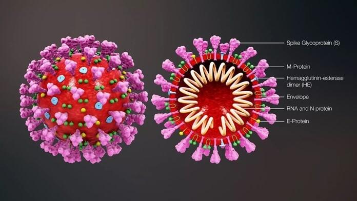 Топ 10 основных теорий о коронавирусе