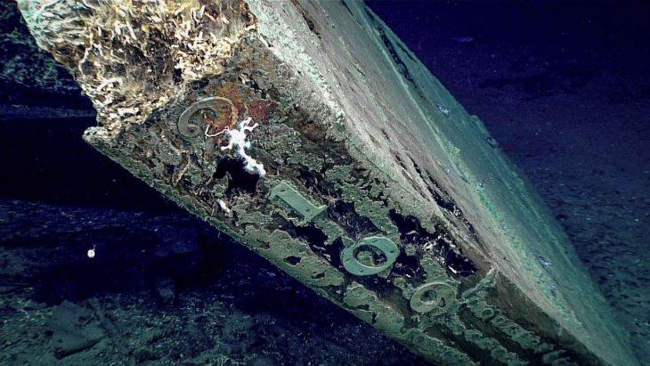 Топ-8 пугающих загадок мирового океана