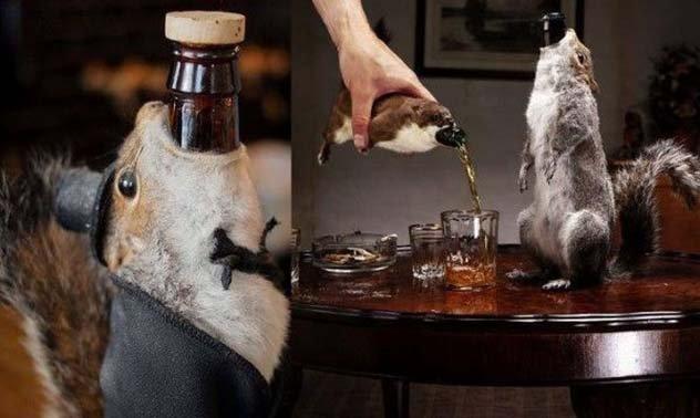 Топ 9 странных алкогольных напитков