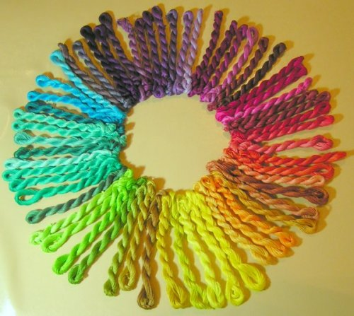 10 удивительных фактов о цветах