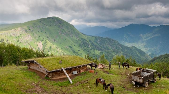 5 регионов РФ с низким качеством жизни
