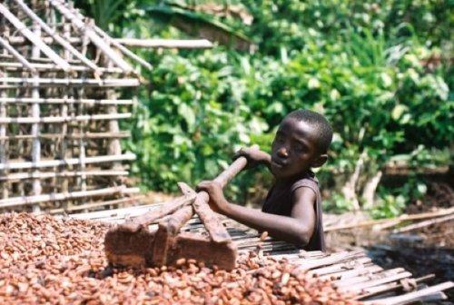 10 занимательных фактов о шоколаде